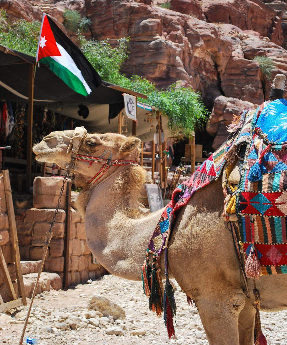 You are going to have to write these down! Jordan is an amazing country and these are just the top highlights you cannot miss! Jordan: places to visit!