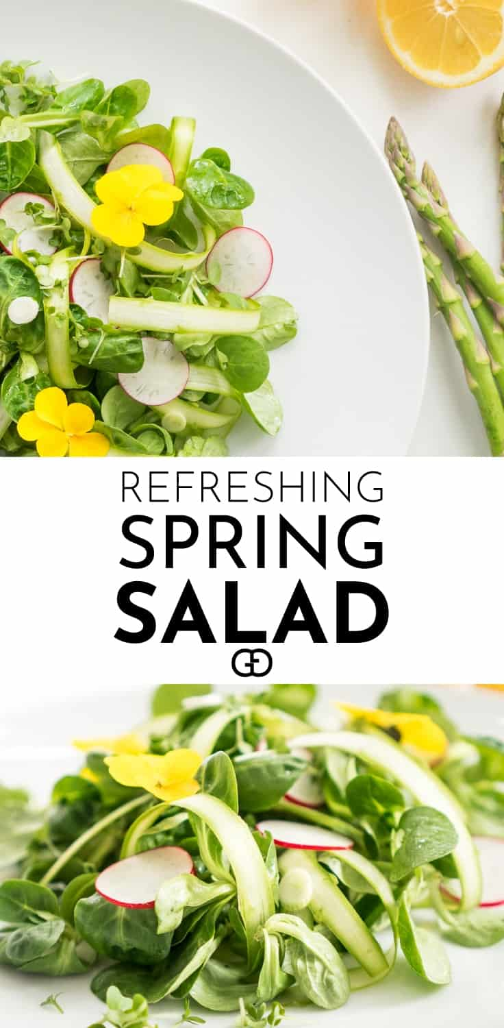 Spring salad recipe: full of fresh ingredients, perfect to brighten up your day! Fresh radish, tender mache salad (lamb's lettuce), spring onions and asparagus make an absolutely delicious salad, fantastic on its own for a light lunch, perfect as a side dish for a meal, and great for a picnic outside to enjoy the sun!