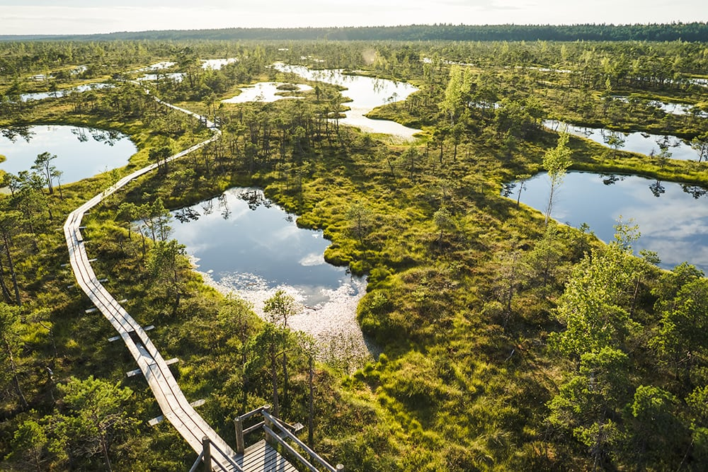Aerial view of wooden bridge and green plants around in Riga, Latvia: cheapest countries to visit