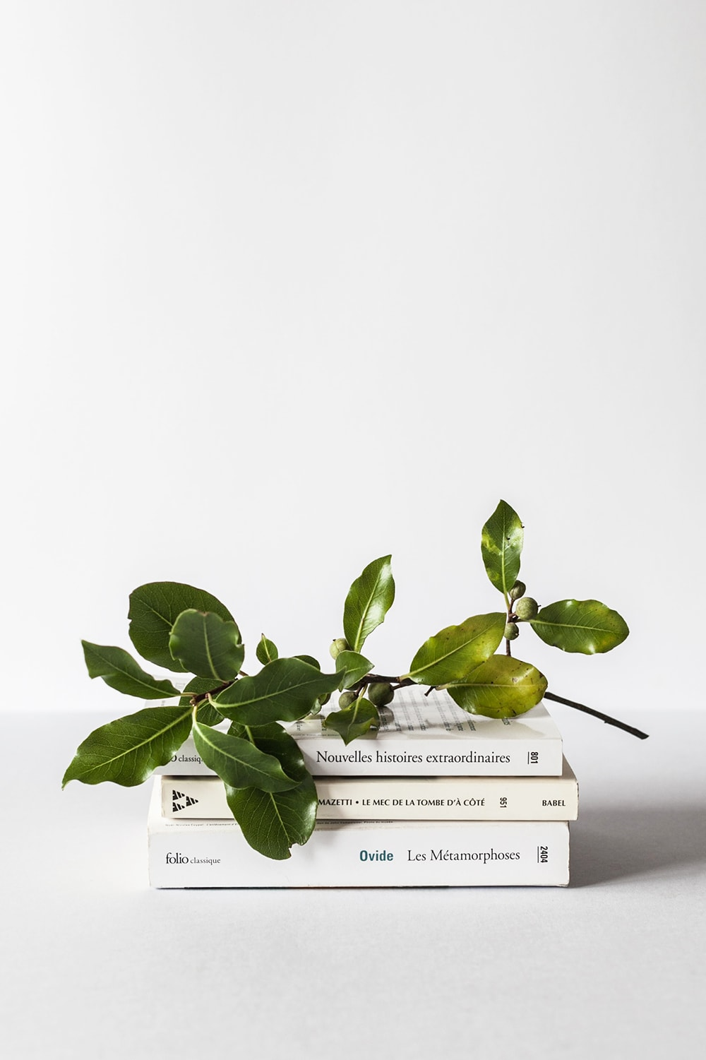 3 books on a white desk with a branch and leaves
