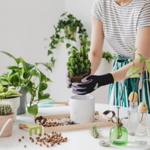 Woman repotting a plant: gardening is one of the many hobbies that make money